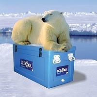 Icekool_pic10