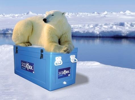 icekool-4(2)
